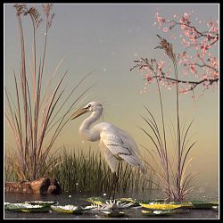 The Great Egret By Ladonna