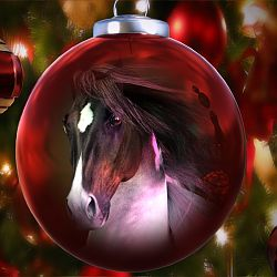 Holiday Horse by Luannemarie