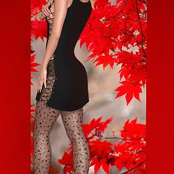 La Femme Little Black Dress And Stockings