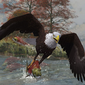 Eagle Fishing by Cinadisilver.jpg